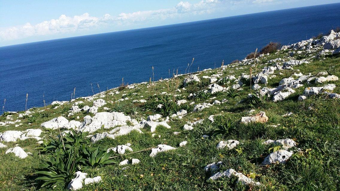 L'Estate è Alle Porte: Perché Scegliere la Vacanza nel Salento con CheraDreams